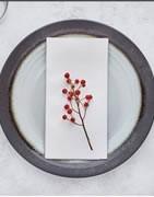Serviettes de Table AirLaid BIO Blanc
